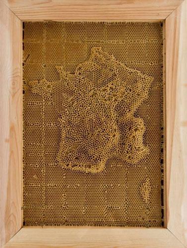 carte-abeille-cire-ruche-01-694x920