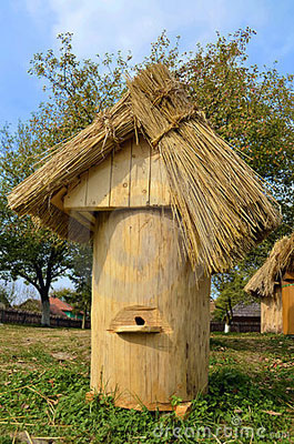 ruches-antiques-22525959