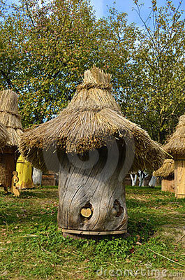ruches-antiques-22525971
