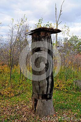 ruches-antiques-27305440