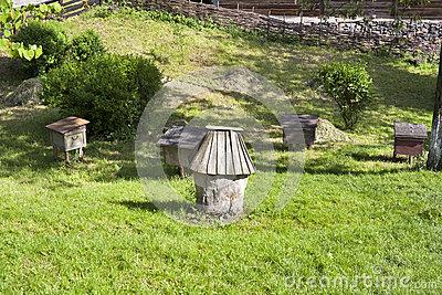 ruches-antiques-d-abeille-de-miel-25262625