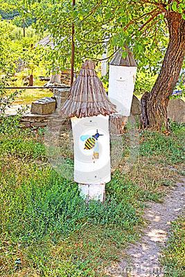 ruches-antiques-la-rservation-historique-et-culturelle-70909993