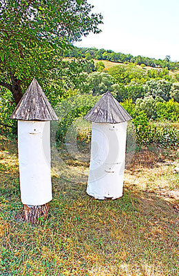 ruches-antiques-la-rservation-historique-et-culturelle-70912317
