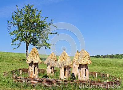 ruches-antiques-sur-un-pr-ukraine-25230940